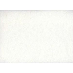 Ριζόχαρτο Stamperia Μονόχρωμο - White - 70x100cm