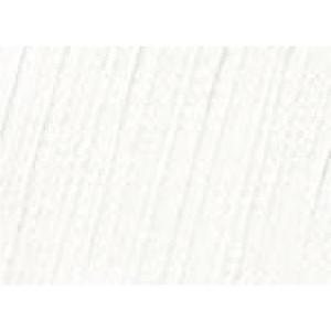 Σκόνη Αγιογραφίας White Titanium 50gr
