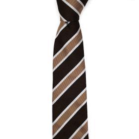 Striped Silk Tie in Earth Tones