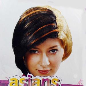 Αποκιράτικη περούκα ξανθό - μελαχρινό κοντό