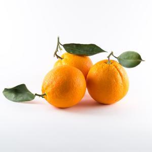 Πορτοκάλια Χυμού 1κιλό