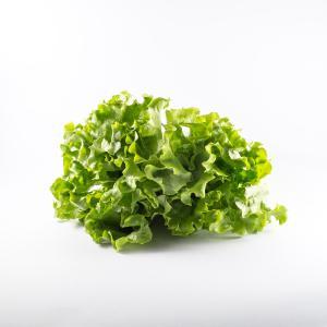 Λόλα Πράσινη 1τμχ