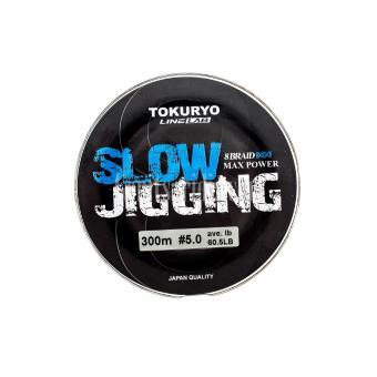 Νήμα Tokuryo Slow Jigging 300m