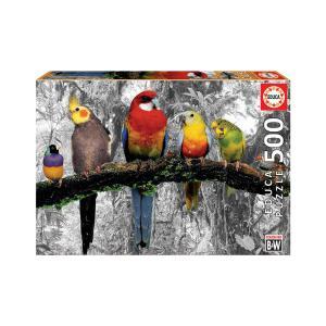 Puzzle Educa Birds on the Jungle 500τεμ 17984