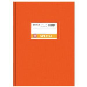 Εξήγηση Βιβλιοδετημένη  Ριγέ 17×25 80φ.