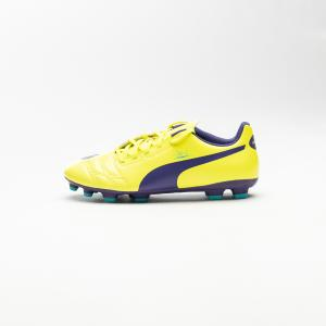 PUMA Evo Power (102957 04)