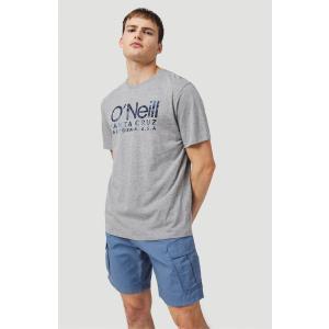 O'NEILL Filbert Cargo Shorts Lifestyle Men