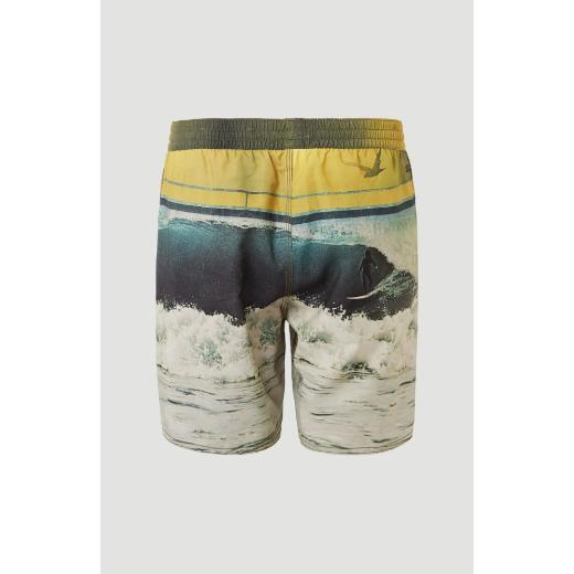 O'NEILL Archive Shorts Multicolor Μαγιό 1